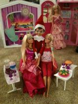 Elf Barbie party